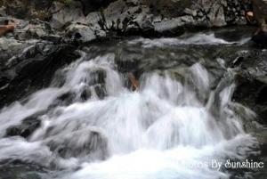 0051_nm_scenery